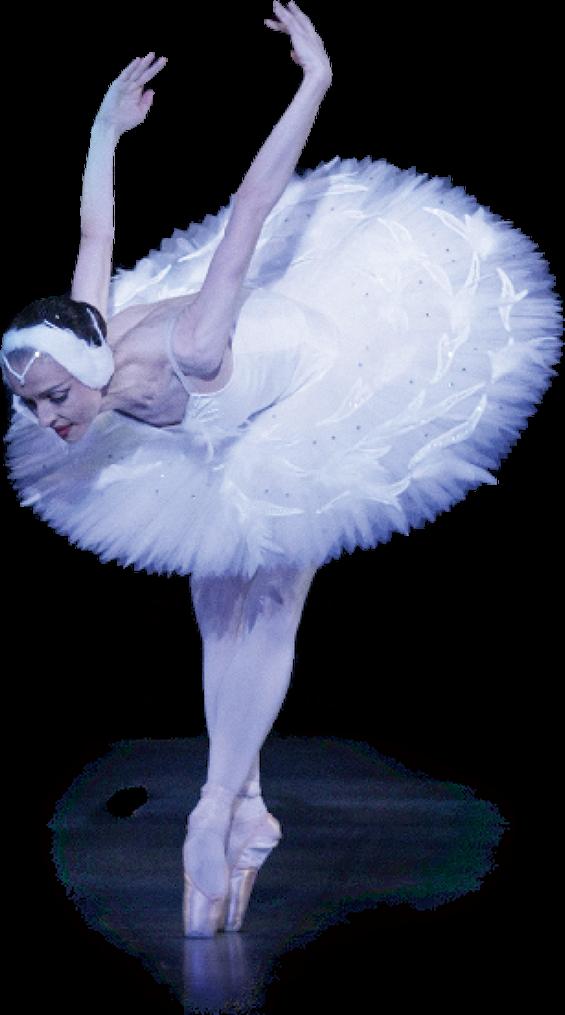 Lisamaria Swan Image